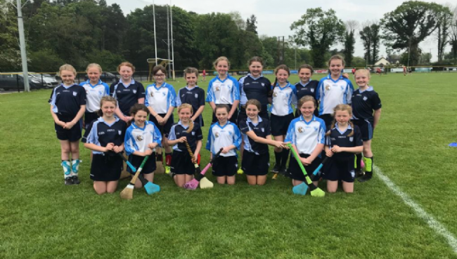 St. Mary's P.S. Annual Camogie Tournament
